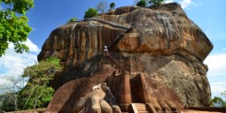 Flights to Sigiriya