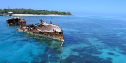 Flights to Heron Island