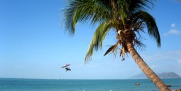 Flights to Puerto Plata